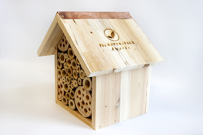 Engraved insect house